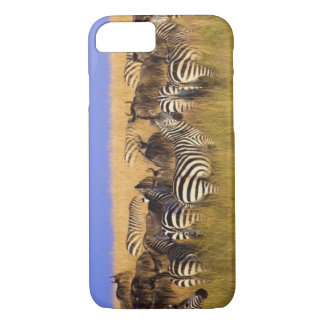 Burchell's Zebras and Wildebeest in tall summer iPhone 7 Case