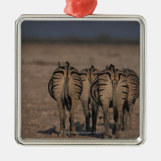 Burchell's Zebras Walking Metal Ornament