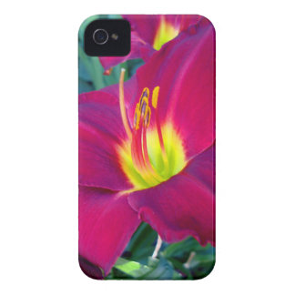 Burgandy Lilies iPhone 4 Covers