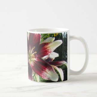 Burgundy Creme Asiatic Lilies Coffee Mug