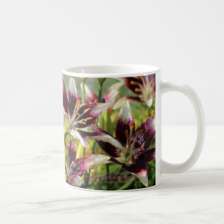 Burgundy Creme Asiatic Lilies Coffee Mug