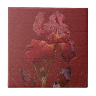 Burgundy Red Iris Garden Flower Ceramic Tiles