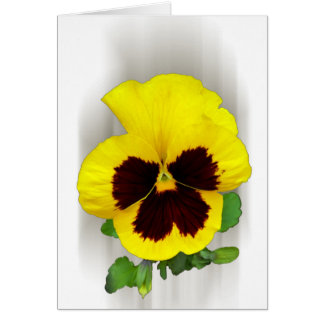 burgundy yellow pansy card
