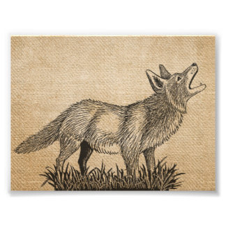 "Burlap Vintage Howling Wolf 7"" x 5"", Photo Print"