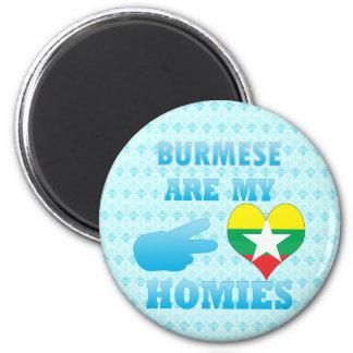 Burmas are my Homies Magnet