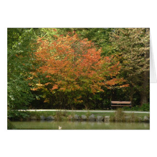 Burnaby's Central Park - Autumn colors Card