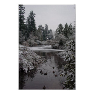 Burnaby's Central Park: Half-frozen Lower Pond Poster