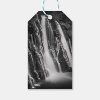 Burney Falls in Black and White Gift Tags
