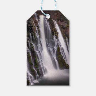 Burney Falls in Color Gift Tags