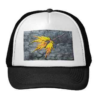 Burnt black wood with yellow leaf trucker hat