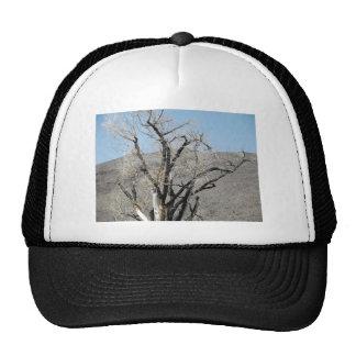 Burnt Gnarly Tree Trucker Hat