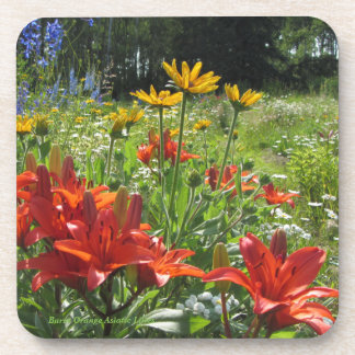 Burnt Orange Asiatic Lilies Summer Garden Coaster