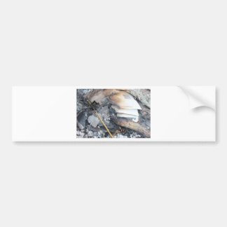 Burnt Papers Bumper Stickers