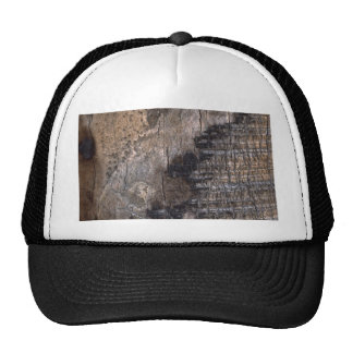 Burnt Tree Trunk Trucker Hat