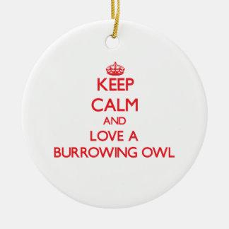 Burrowing Owl Ceramic Ornament