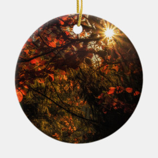 Burst of Fall Ceramic Ornament