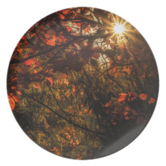 Burst of Fall Party Plate