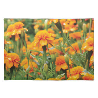 burst of orange color placemat