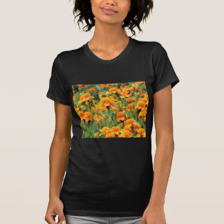 burst of orange color T-Shirt