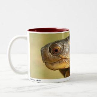 Bush 01 Two-Tone mug
