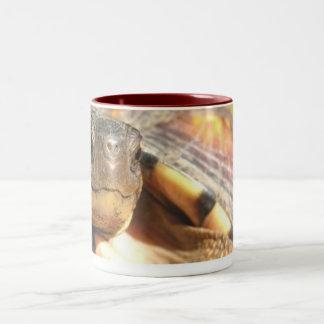 Bush 02 coffee mug