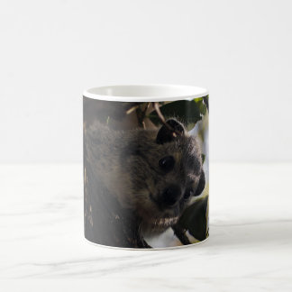 Bush Hyrax Coffee Mugs