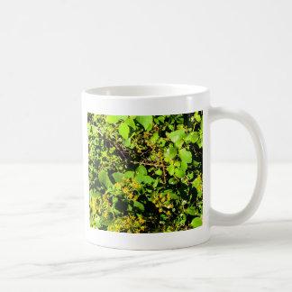 bushes coffee mugs