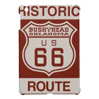 BUSHEYHEAD66 iPad MINI CASE