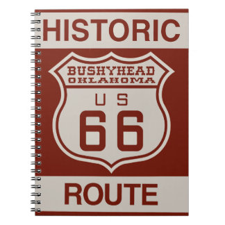 BUSHEYHEAD66 NOTEBOOK