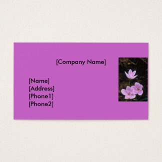 Business Card / Frequent Shopper