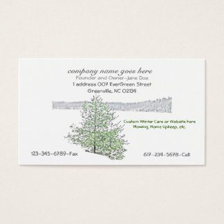Business Cards: w/ a touch of Winter Business Card