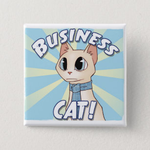 business cat square wall
