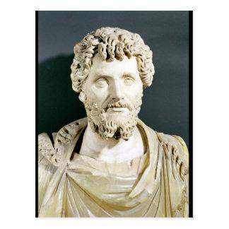 Bust of Emperor Septimus Severus Postcard