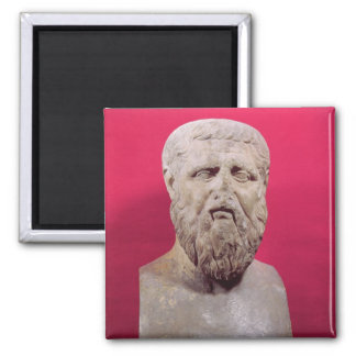 Bust of Plato  copy of a 4th century BC original Magnet