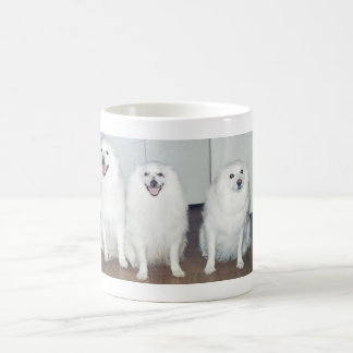 Buster, Bandit and Farrah mug
