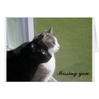 Buster & Gabe - Missing You (customizable) Card