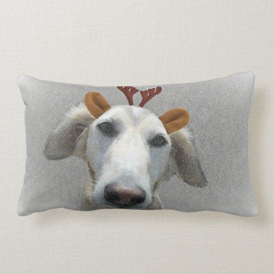 Buster Lumbar Pillow