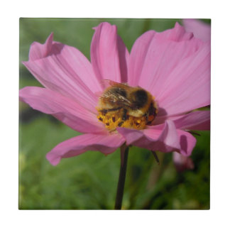 Busy Bee on Cosmo Tile
