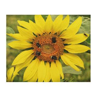 "Busy Bee's Sunflower 10""x8"" Wood Wall Art"