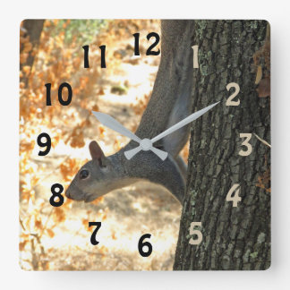 Busy Squirrel Numbered Wall Clock