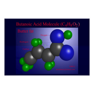 Butanoic Acid Molecule (print) Poster