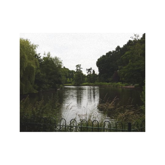 Bute Park Lake Canvas Print