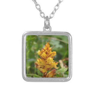 Butterbur broom (Orobanche flava) Silver Plated Necklace