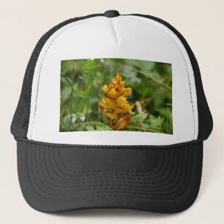 Butterbur broom (Orobanche flava) Trucker Hat