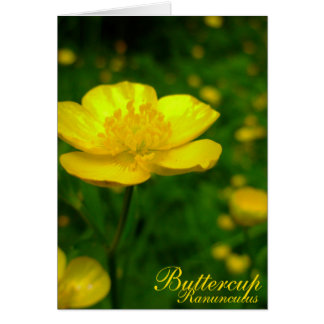 Buttercup Card Wild Flowers Customized Cards