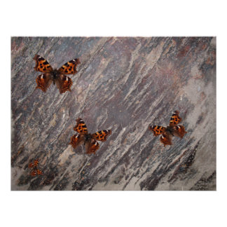 Butterflies and Marble Poster