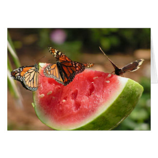 Butterflies and watermelon card