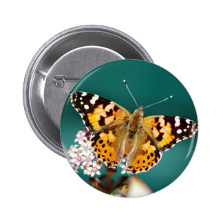 Butterflies are free buttons