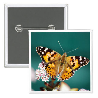 Butterflies are free 2 inch square button