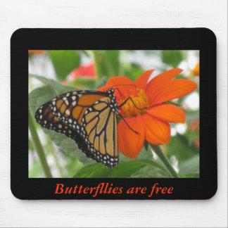 Butterflies are free mouse pad